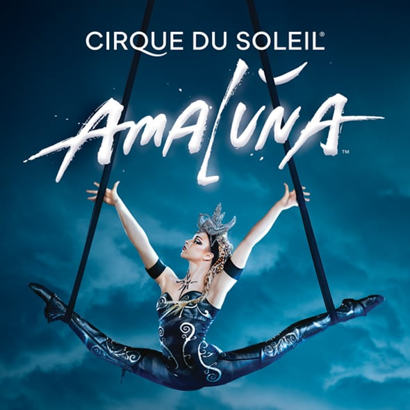 Learn more about Amaluna