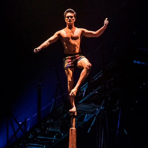 Indian Pole number from Bazzar, Cirque du Soleil