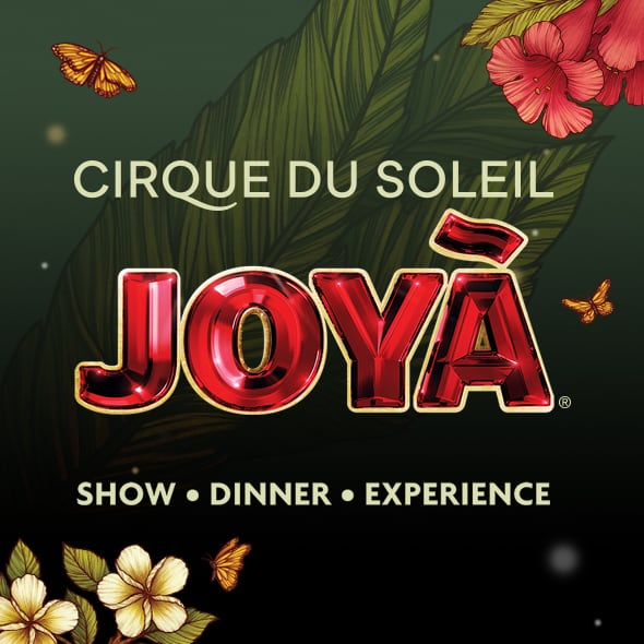 Learn more about JOYÀ
