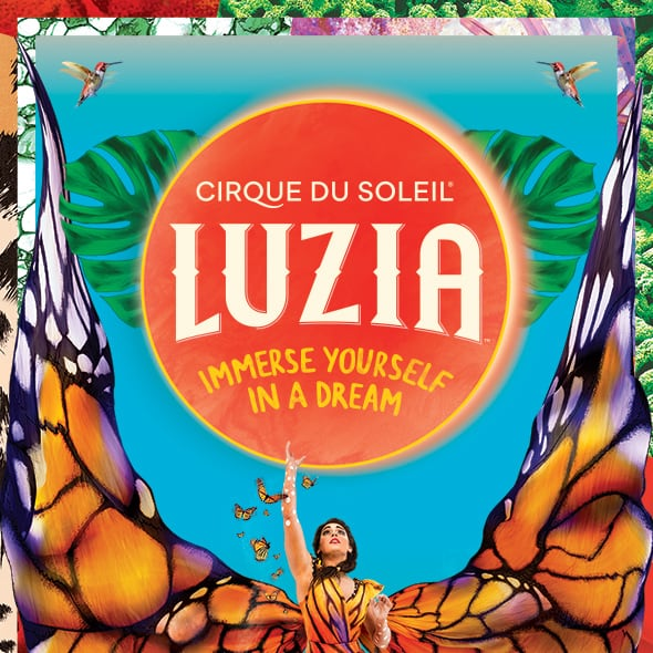 Learn more about LUZIA
