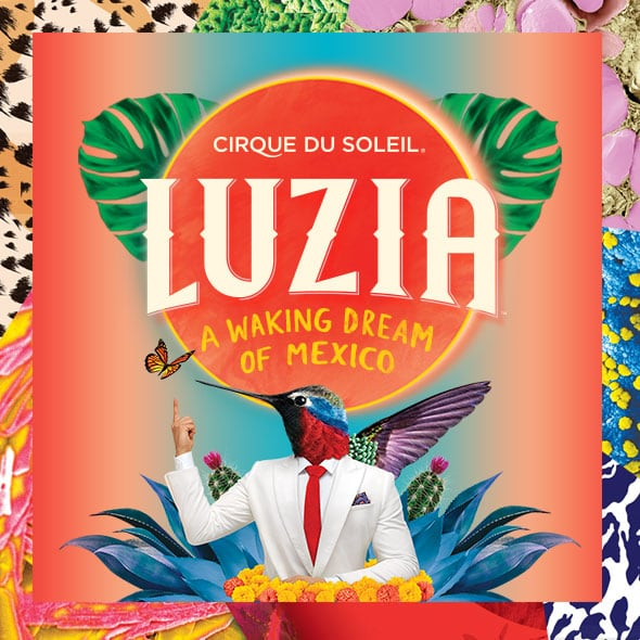 Tickets Luzia In Orlando At Under The Big Top The Florida Mall