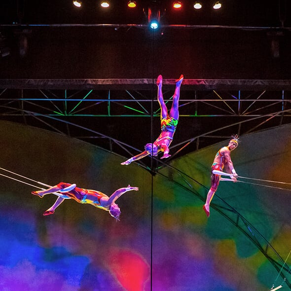 The trapeze act from Mystère