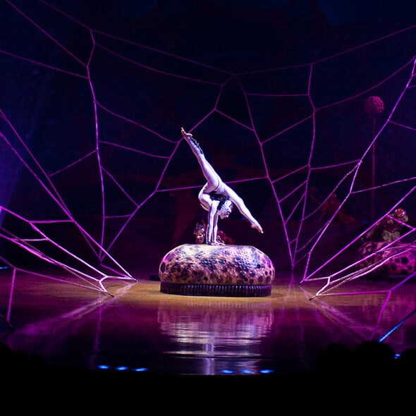 The Contortion act from OVO performed by the Spiders