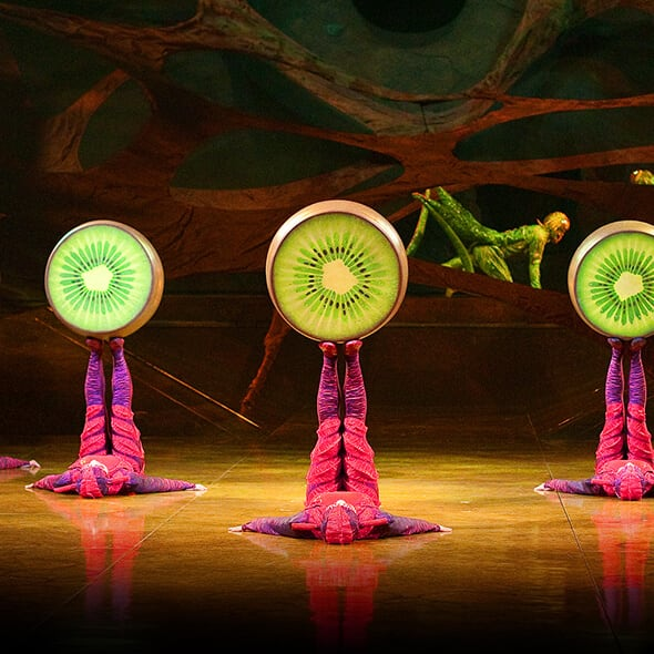 The Foot Juggling act from OVO performed by the Ants