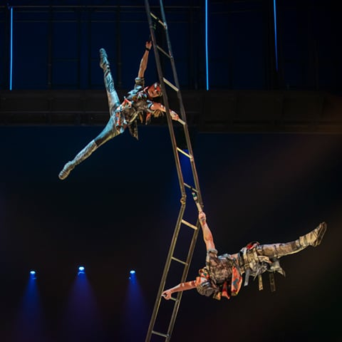 The Acrobatic Ladders act from the show VOLTA