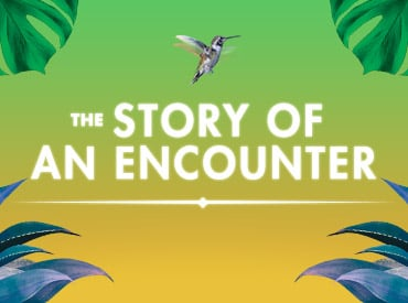 The Story of an Encounter | Cirque du Soleil Meets Mexico